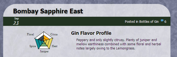 Example of Gin Review Infographic